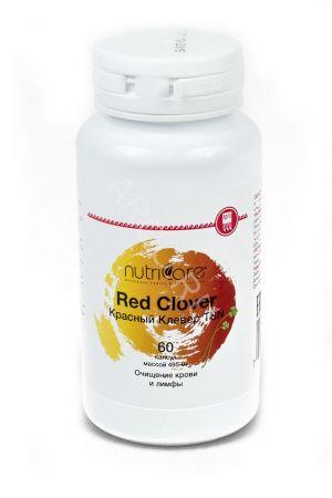 Красный клевер для восстановления гормонального баланса